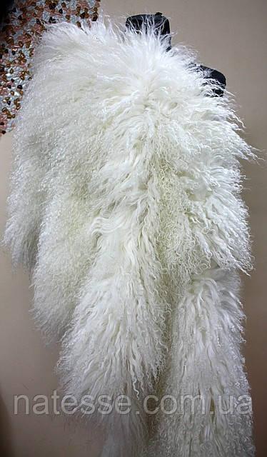 Лама белая (Испания)