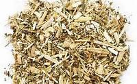 Болиголов пятнистый трава 100 г