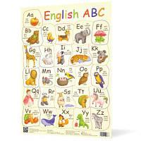 Плакат Англійська абетка А2