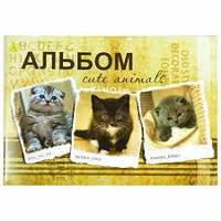 Альбом для рисования 12 листов коты