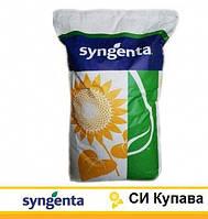 Семена подсолнечника Сингента СИ Купава (Syngenta) A-G*