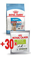 АКЦИЯ! Royal Canin MEDIUM PUPPY 15 кг + ПОДАРОК!