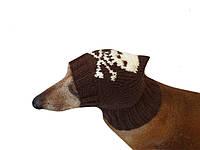 Шапка для собаки череп с костями
