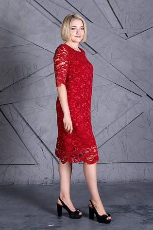 Платье Selta 853 размеры 50, 52, 54, 56, фото 2