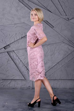 Платье Selta776 размеры 50, 52, 54, 56, фото 2