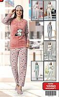 """Пижама женская махровая GLISA, размеры S-XL (4 цв.) """"Carollina Fashion"""" купить недорого от прямого поставщика"""