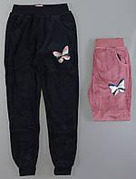 Спортивные велюровые брюки утепленные для девочек F&D, 4-12 лет. Артикул: YF8518