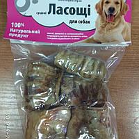 """Ласощі для собак """"трахея яловича"""", фото 1"""