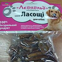 """Ласощі для собак """"сушене яловиче сухожилля"""", фото 1"""