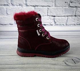 Зимние ботинки для девочек Бордовый Clibee