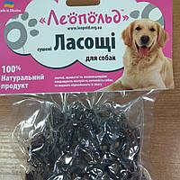"""Ласощі для собак """"сушені легені яловичі """"100 грамм, фото 1"""