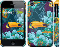"""Чехол на iPhone 3Gs Тропики """"2852c-34"""""""
