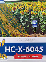 Новинка 2019 року. Сербський подсолнечник НС-Х-6045 стійкий до семи рас вовчка A-G+. Гібрид НСХ 6045 під ЕвроЛайтнинг. Середньоранній 112 днів. Врожайність вище 30 центнер з гектара.