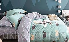 Подростковое постельное белье Сатин Вилюта 354