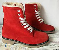 Зимние стильные замшевые женские сапоги  Timberland красный замш, фото 1