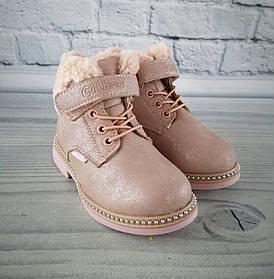 Зимние ботинки для девочек розовый Clibee размер 31