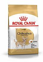 Корм Royal Canin Chihuahua Adult, для Чихуахуа от 8 месяцев, 1,5 кг