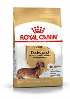 Корм Royal Canin Dachshund Adult, для Таксы от 10 месяцев, 1,5 кг