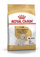 Корм Royal Canin West Highland White Terrier Adult, для Вест хайленд уайт терьеров, 0,5кг