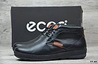 Мужские кожаные зимние ботинки Ecco (Реплика) (Код: 33 шн   ) ►Размеры [40,41,42,43,44,45], фото 1