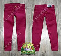 Цветные брюки для девочки 1-3 года