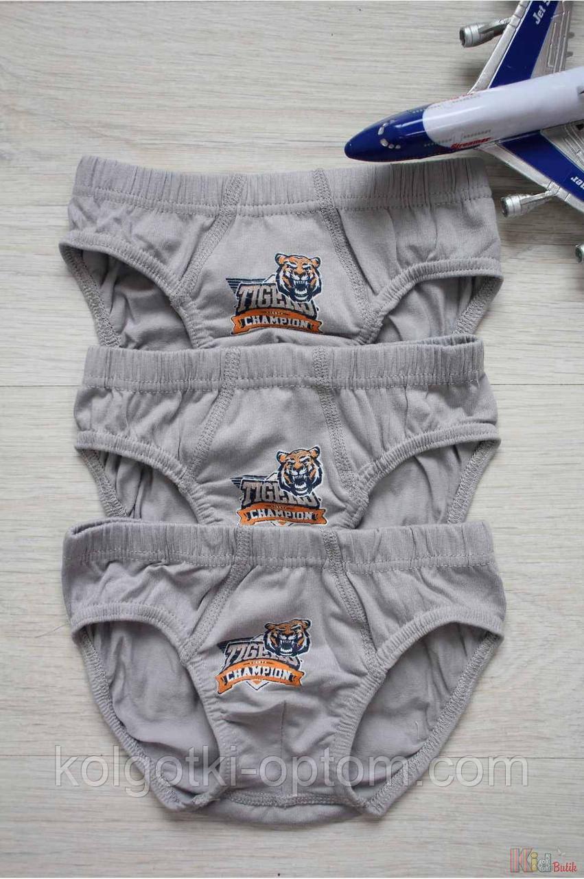 """ОПТОМ Набор трусиков 3шт. """"Tigers champion"""" для мальчика 3-4 лет (3-4 года)  Luxxa 3037166050195"""