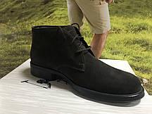 Чоловічі черевики  Polo.