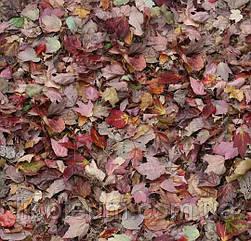 Ковролін флокіроване покриття Flotex Vision Image 000532 red leaves