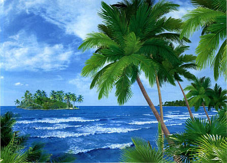 Фото обои, Багамские острова, 8 листов, размер 134x194 см, фото 2