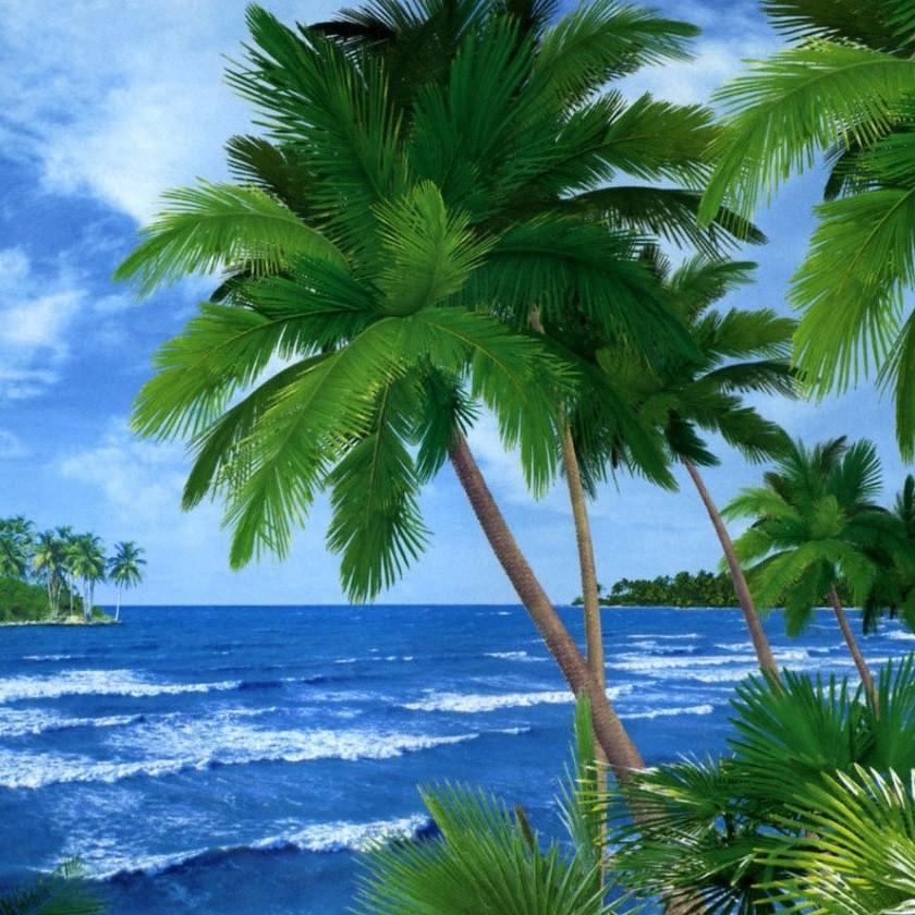 Фото обои, Багамские острова, 8 листов, размер 134x194 см