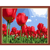 Рисование по номерам из серии Цветы <<Тюльпаны>>
