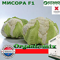 Капуста цветная МИСОРА F1, ТМ KITANO SEEDS, проф. пакет 2500 семян, фото 1
