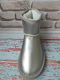 Классические стальные мини угги Ugg натуральные, фото 4