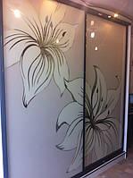 Шкаф купе с доводящими дверями, фото 1
