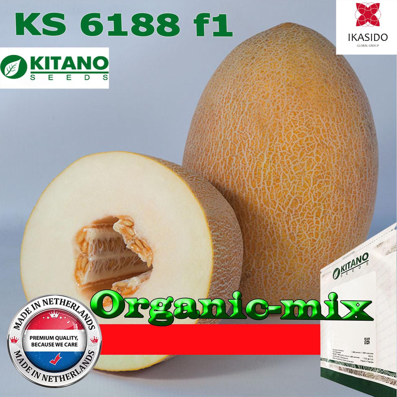 Семена, дыня очень крупная КS 6188 ранняя 1000 семян ТМ Kitano Seeds