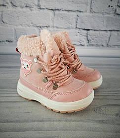 Зимние сапоги для девочек. Розовый Clibee