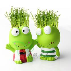 Растения, травянчики