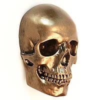 Бронзовый череп из гипса, маска на стену, декоративный, в натуральную величину под роспись