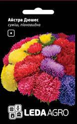 Насіння Астра хризантемовидная Аполлонія суміш 0,2 г LEDAAGRO, фото 2