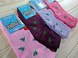 Носки детские махровые размер 16-18 для девочек Житомир Украина, фото 3
