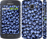 "Чехол на Samsung Galaxy Ace 3 Duos s7272 Черника ""851c-33"""
