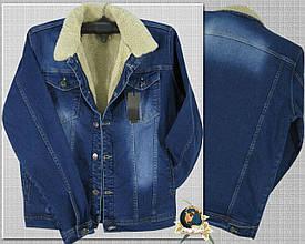 Куртка мужская джинсовая утеплённая синего цвета размер M - L