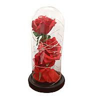 Консервированная бессмертная красная роза со светом в стекле 3 розы