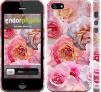 """Чехол на iPhone 5 Розы 1 """"2645c-18"""""""