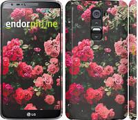 """Чехол на LG G2 Куст с розами """"2729c-37"""""""