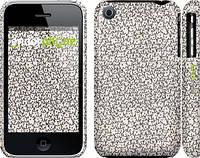 """Чехол на iPhone 3Gs Котята """"1171c-34"""""""