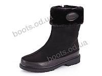 """Ботинки зимние женские """"Trendy"""" #362-1. р-р 36-41. Цвет черный. Оптом"""