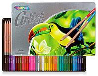 Карандаши Пастель масляная, круглая Рremium, серия Artist (36 цветов), Colorino (65726PTR)