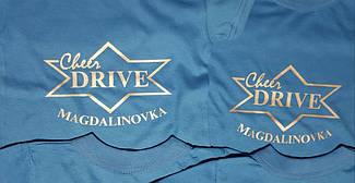 Drive г Магдалиновка  3