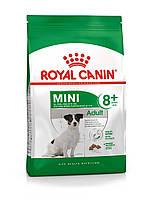 Корм Royal Canin Mini Adult 8+, для взрослых собак маленьких пород, 2 кг